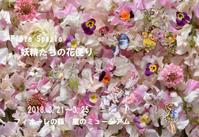 Fiore Spazio2018妖精たちの花便り - Fiore Spazio 花便り