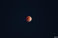 皆既月食 - Photolog