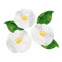 節目の季節 (岡) - 柚の森の仲間たち