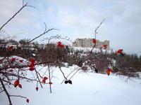 思い出の雪景色 今年は降るか、イタリア ペルージャ - イタリア写真草子 Fotoblog da Perugia