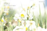 愛の行方 - Poetry Garden 詩庭