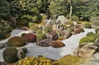 妙心寺退蔵院の「元信の庭」 - たんぶーらんの戯言