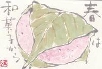 道明寺「春は和菓子から」 - ムッチャンの絵手紙日記