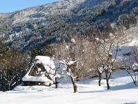 冬のかがやき雪の合掌集落をあとにして - タビノイロドリ