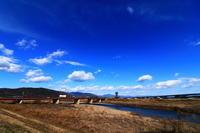 淀川河川公園八景フォトコンテスト入賞作品写真展@さくらであい館 - 司法書士 行政書士の青空さんぽ
