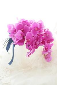 アームブーケザ・リッツカールトン東京様へピンクの蘭だけで - 一会 ウエディングの花