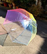 かわいい傘を買ったよ - むつずかん