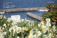 居場所 - Poetry Garden 詩庭