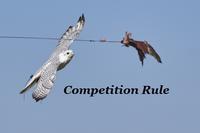 フライトフェスタ2019 競技ルールFlight Festa 2019 Competition Rule - 新米ファルコナー(鷹匠)の随想録