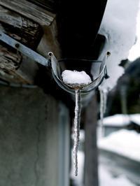 今のところ、大雪ではなく小雪・・・針畑雪は、へそ曲がり? - 朽木小川より 「itiのデジカメ日記」 高島市の奥山・針畑郷からフォトエッセイ