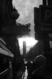 street scene #6 - S w a m p y D o g - my laidback life