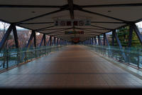 夕暮れの散歩道 - 彩りの軌跡