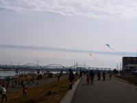 18.02.06 江戸川堤~凧揚げfestival~♪♪ - 人生とは ?