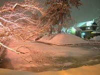 冬に咲くさくらライトアップ:弘前公園(弘前市)*2018.02.06 - 津軽ジェンヌのcafe日記