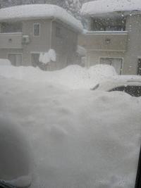 雪雪雪 - こうちゃんとやりたいことリスト