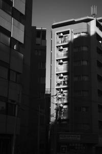 shadow & light (4cut) 茗荷谷辺り -     ~風に乗って~    Present