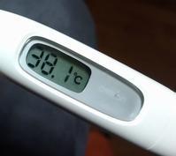 インフルエンザb型に罹患した。予防接種をしたのに・・・。 - 草の庵日録