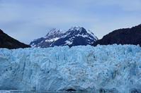 グレーシャーベイ国立公園の氷河を満喫しました。:ルビープリンセスアラスカクルーズ - あれも食べたい、これも食べたい!EX