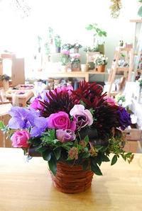 春の初々しいお花で御祝しませんか? - 花と暮らす店 木花 Mocca