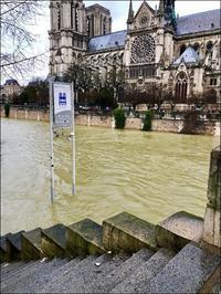 パリではセーヌ川の増水がまだ引いていないという - 生きる歓び Plaisir de Vivre。人生はつらし、されど愉しく美しく