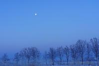 冷たい月 - デジタルで見ていた風景