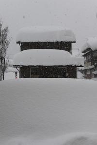平成のさんまる豪雪 (30豪雪) - 酎ハイとわたし