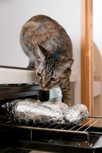焼き芋とミッちゃん - 猫と夕焼け