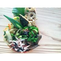 塩サバBENTO - Feeling Cuisine.com