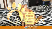 ブレードにゃんだ? - 猫と暮らす とら猫JOYのもふもふ日記 - The SKY - Timelapse. :: 猫と暮らす(ΦωΦ)
