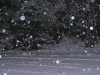 この冬二度目の雪を - 光の音色を聞きながら Ⅲ