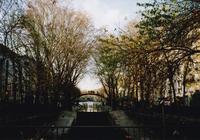 Canal St-Martin - S w a m p y D o g - my laidback life