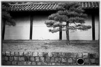 散歩南区 - Hare's Photolog