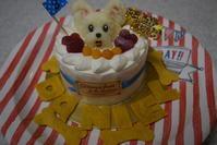 ♪ ダニエル   8歳のお誕生日~(*^。^*) ♪ - happy west DANIEL story