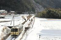 山吹色の雪景色 - かにさんの横歩き散歩日記