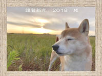 謹賀新年 戌 - Fuyugomori