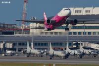 2月も台湾へ  A320  Peach(MM) - 飛行機の虜