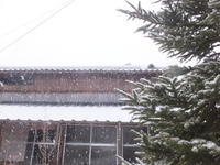 2月6日の雪景色 - アオモジノキモチ