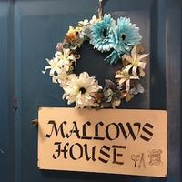 2月は今年のテーマカラー「ホワイトブルー」に - 千葉の香りの教室&香りの図書室 マロウズハウス