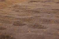 Footprints - ∞ infinity ∞