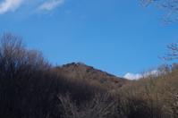 春を探しに~三毳山公園 - 季節の風を追いかけて
