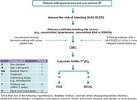 心房細動患者の血圧は140/90mmHg未満に保つべき:不整脈と血圧に関するコンセンサス文書(EHRA,ESC合同):EHJCP誌 - 心房細動な日々