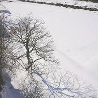 雪国では毎日長靴はいています - 小さな暮らしにひとさじ⁺