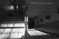 もと崇仁小学校7 - 写楽彩