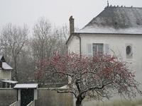 雪やこんこの2月9日 - フランス Bons vivants des marais