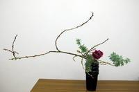瓶花 - リリ子の一坪ガーデン