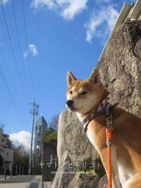yamato、臭うぞ!【動画あり】 - yamatoのひとりごと