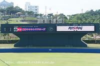 2018ヤクルト浦添キャンプ、1軍コーチ陣(宮本・石井琢朗・河田・土橋・宮出) - Out of focus ~Baseballフォトブログ~
