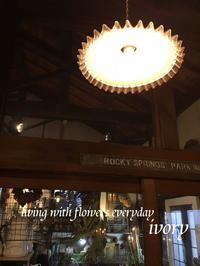 2月の雨 -  Flower and cafe 花空間 ivory (アイボリー)