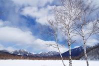 冬の戦場ヶ原-4 - 自然と仲良くなれたらいいな2