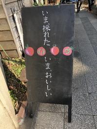 Sentimental Bookstore 「故郷」 - 海の古書店